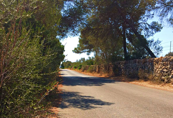 Road cycling routes Aparthotel Fontanellas Playa to Cap Blanc Majorca