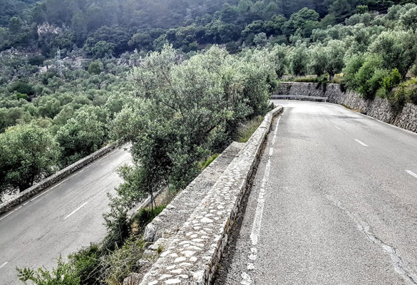 Road cycling routes Aparthotel Fontanellas Playa to Orient and Sóller Majorca